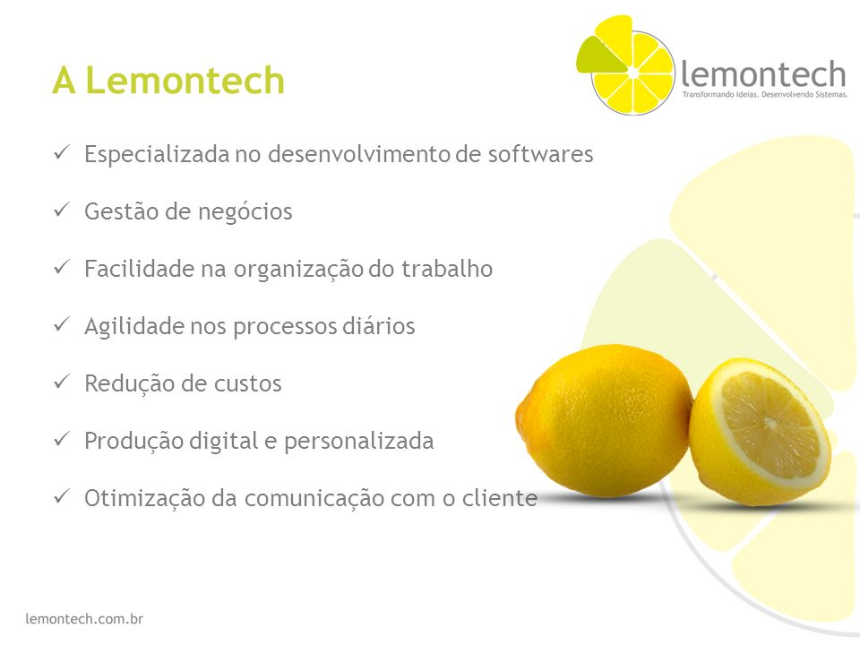 A Lemontech Especializada no desenvolvimento de softwares