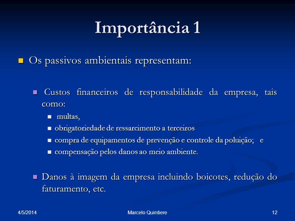 Importância 1 Os passivos ambientais representam:
