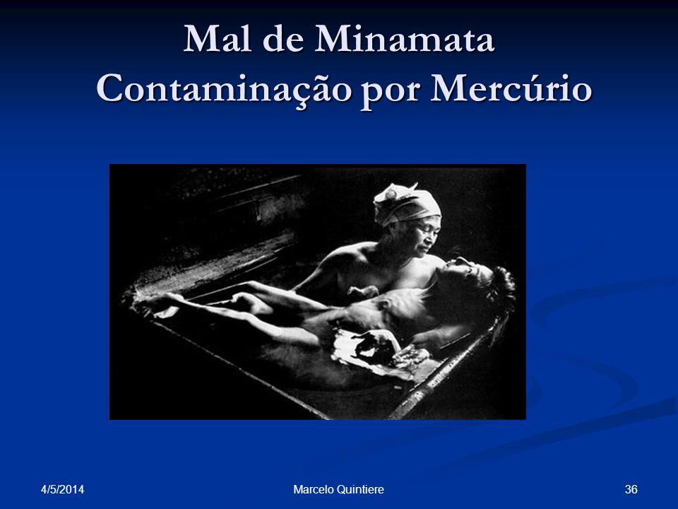 Mal de Minamata Contaminação por Mercúrio