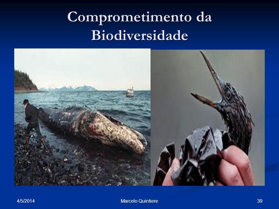 Comprometimento da Biodiversidade