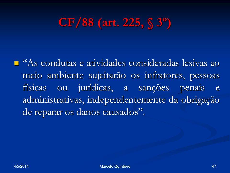 CF/88 (art. 225, § 3º)