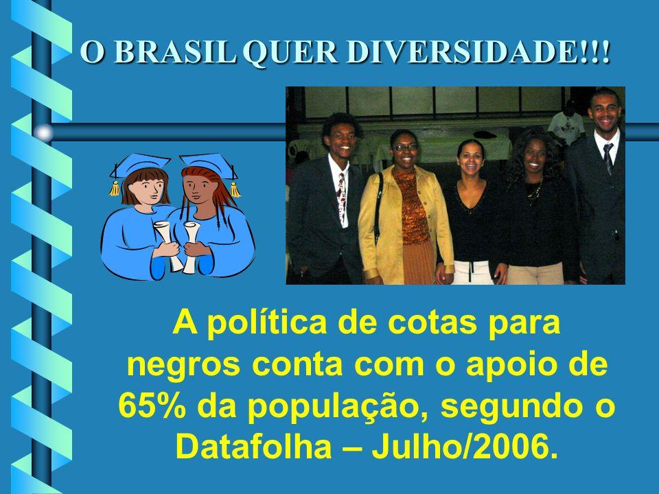 O BRASIL QUER DIVERSIDADE!!!