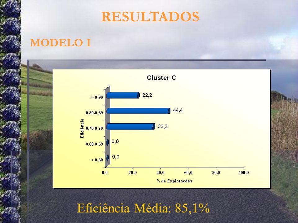 RESULTADOS MODELO I Eficiência Média: 85,1%