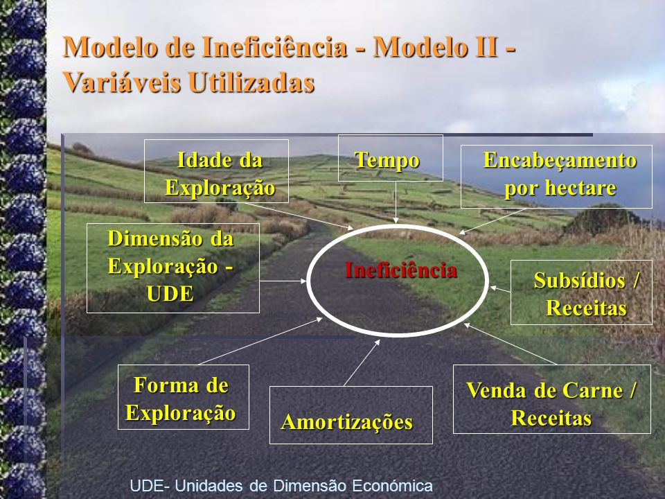 Modelo de Ineficiência - Modelo II - Variáveis Utilizadas