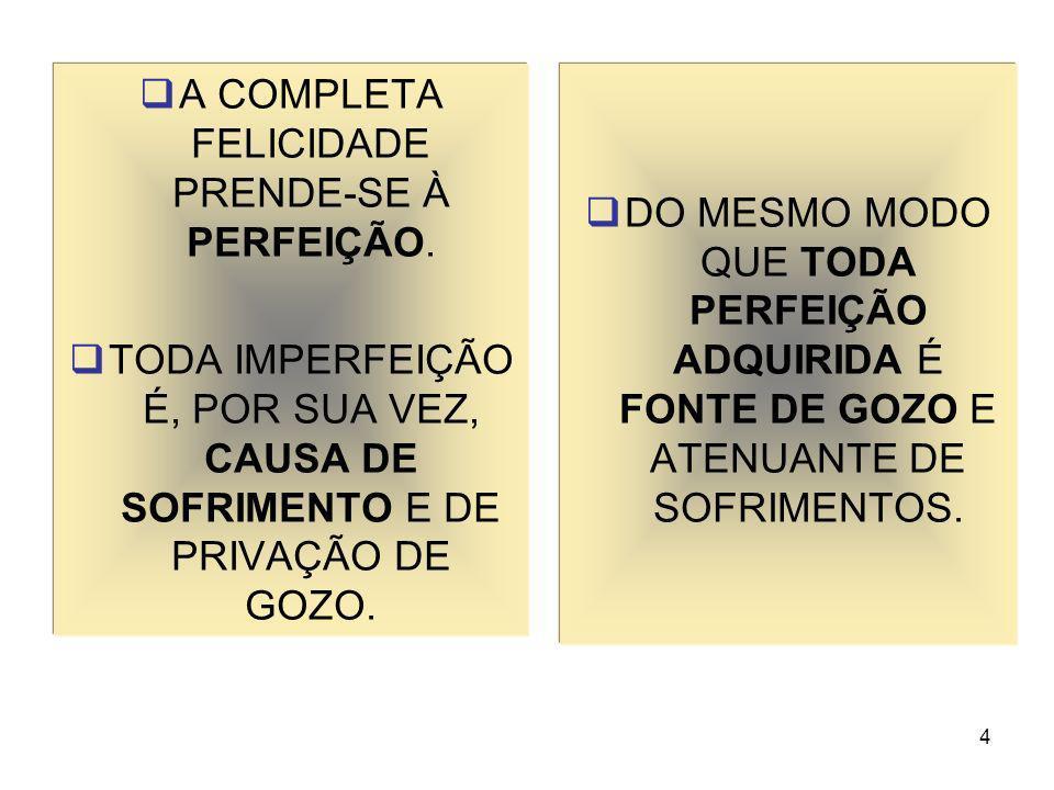 A COMPLETA FELICIDADE PRENDE-SE À PERFEIÇÃO.