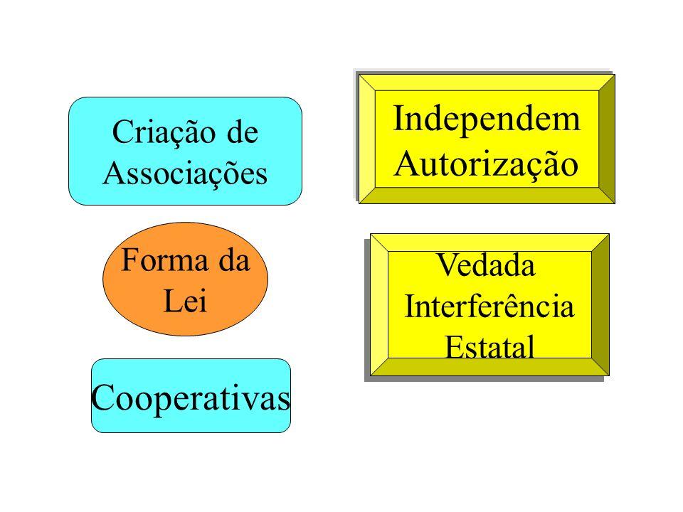 Independem Autorização Cooperativas Criação de Associações Forma da