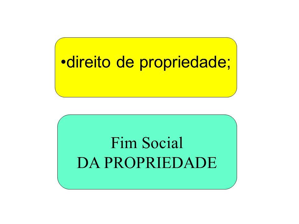 direito de propriedade;