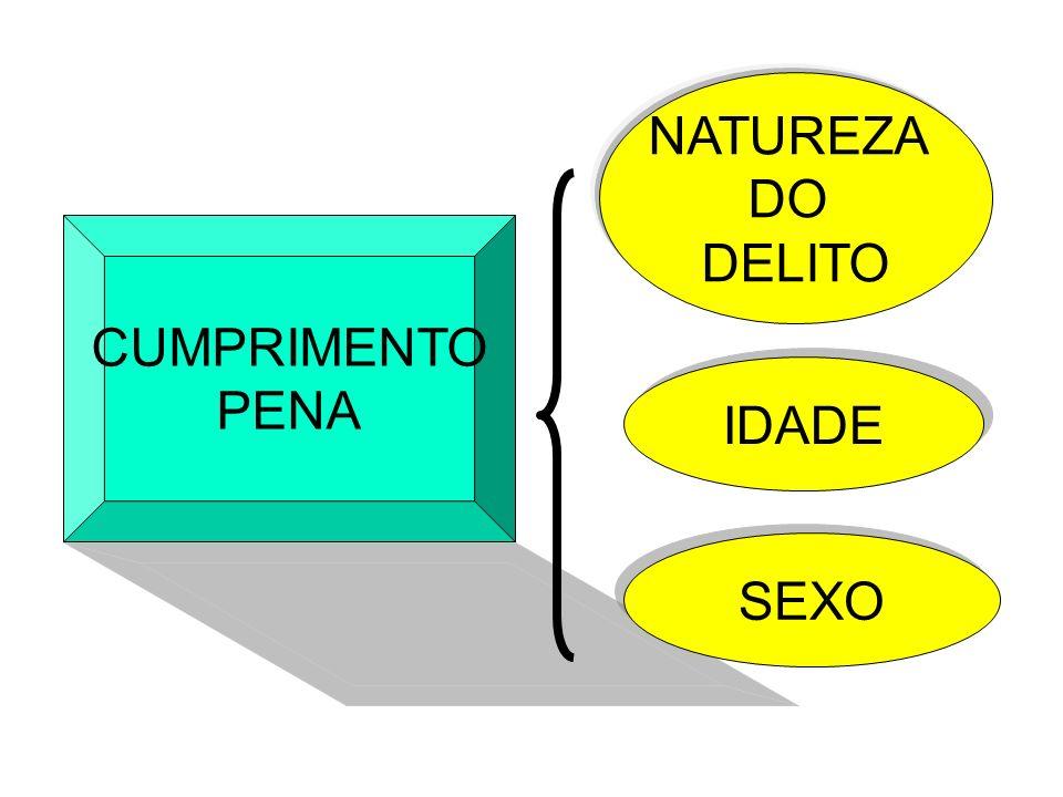NATUREZA DO DELITO CUMPRIMENTO PENA IDADE SEXO