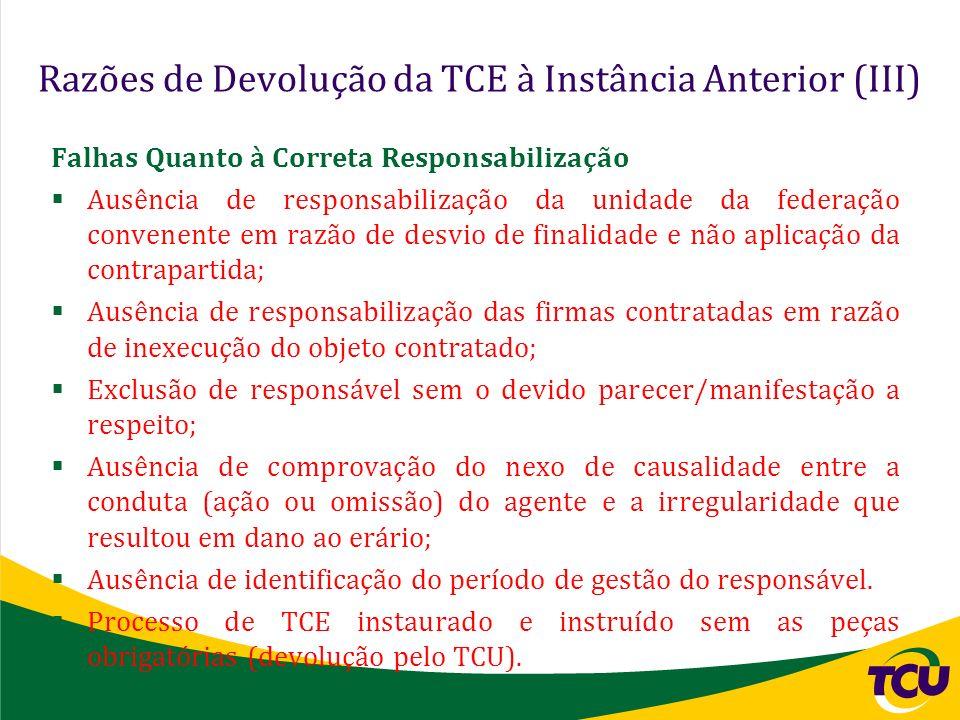 Razões de Devolução da TCE à Instância Anterior (III)