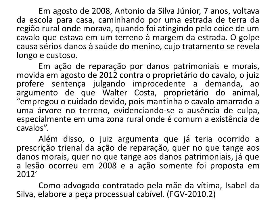 Em agosto de 2008, Antonio da Silva Júnior, 7 anos, voltava da escola para casa, caminhando por uma estrada de terra da região rural onde morava, quando foi atingindo pelo coice de um cavalo que estava em um terreno à margem da estrada. O golpe causa sérios danos à saúde do menino, cujo tratamento se revela longo e custoso.
