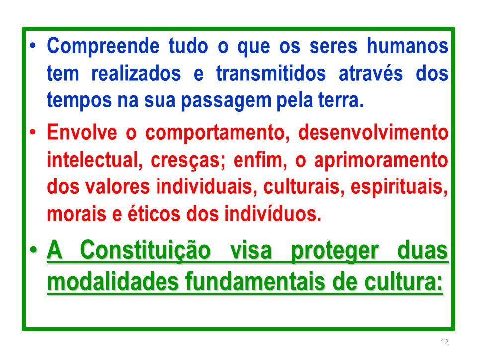 A Constituição visa proteger duas modalidades fundamentais de cultura: