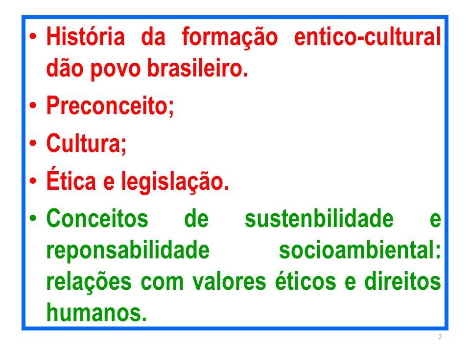 História da formação entico-cultural dão povo brasileiro.