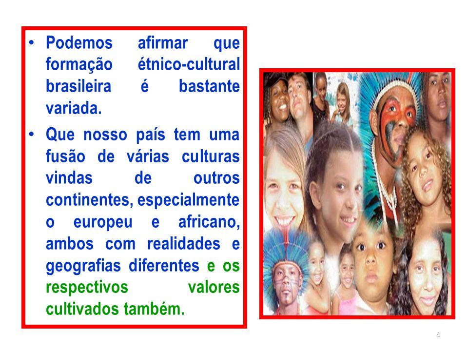 Podemos afirmar que formação étnico-cultural brasileira é bastante variada.