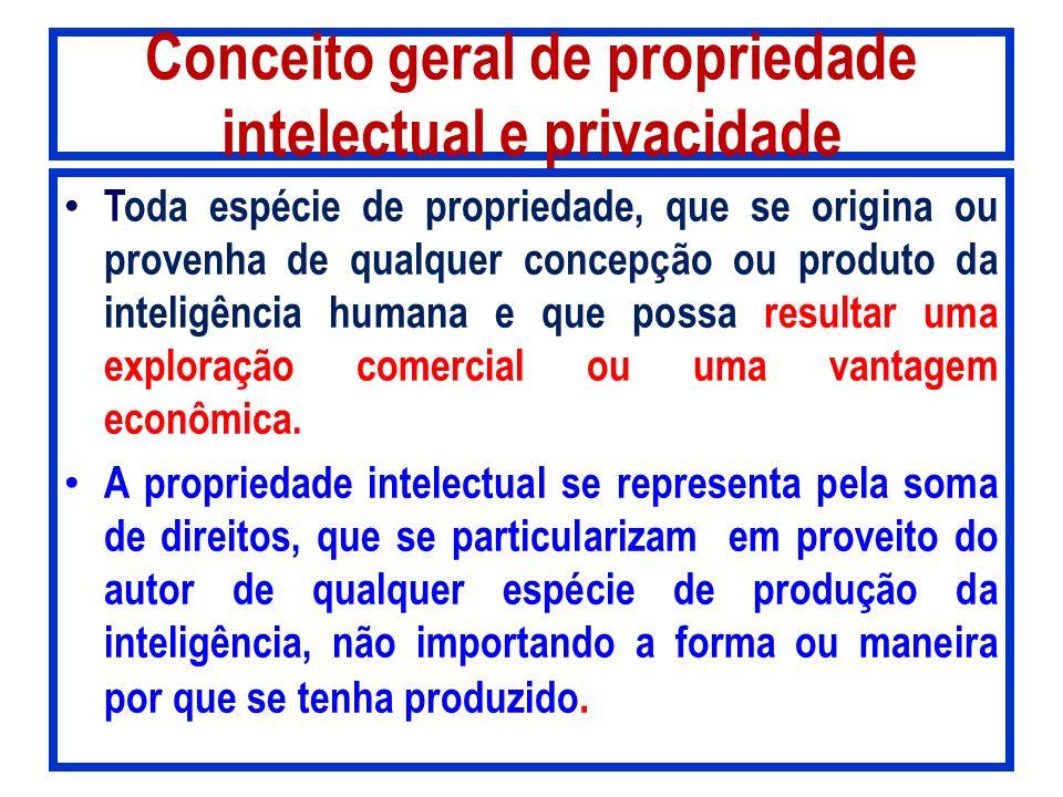 Conceito geral de propriedade intelectual e privacidade