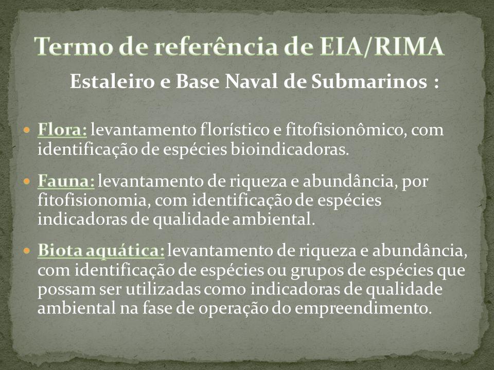 Termo de referência de EIA/RIMA