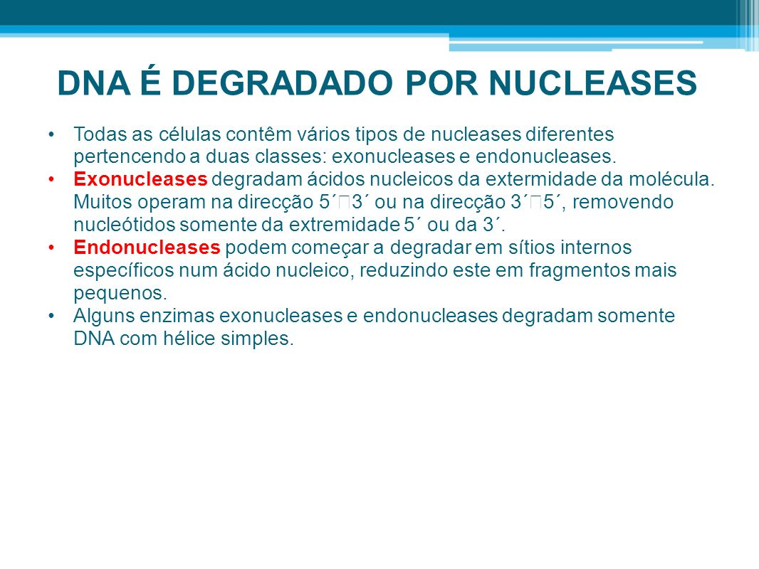 DNA É DEGRADADO POR NUCLEASES