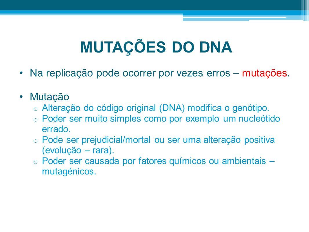 MUTAÇÕES DO DNA Na replicação pode ocorrer por vezes erros – mutações.