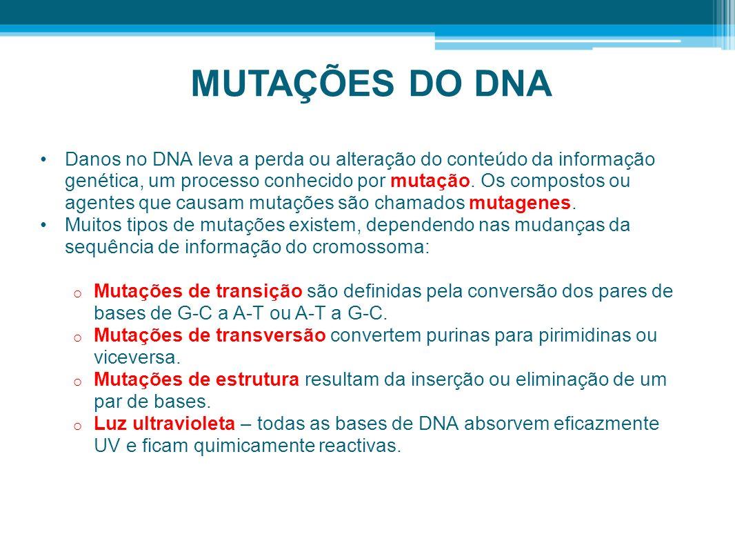 MUTAÇÕES DO DNA