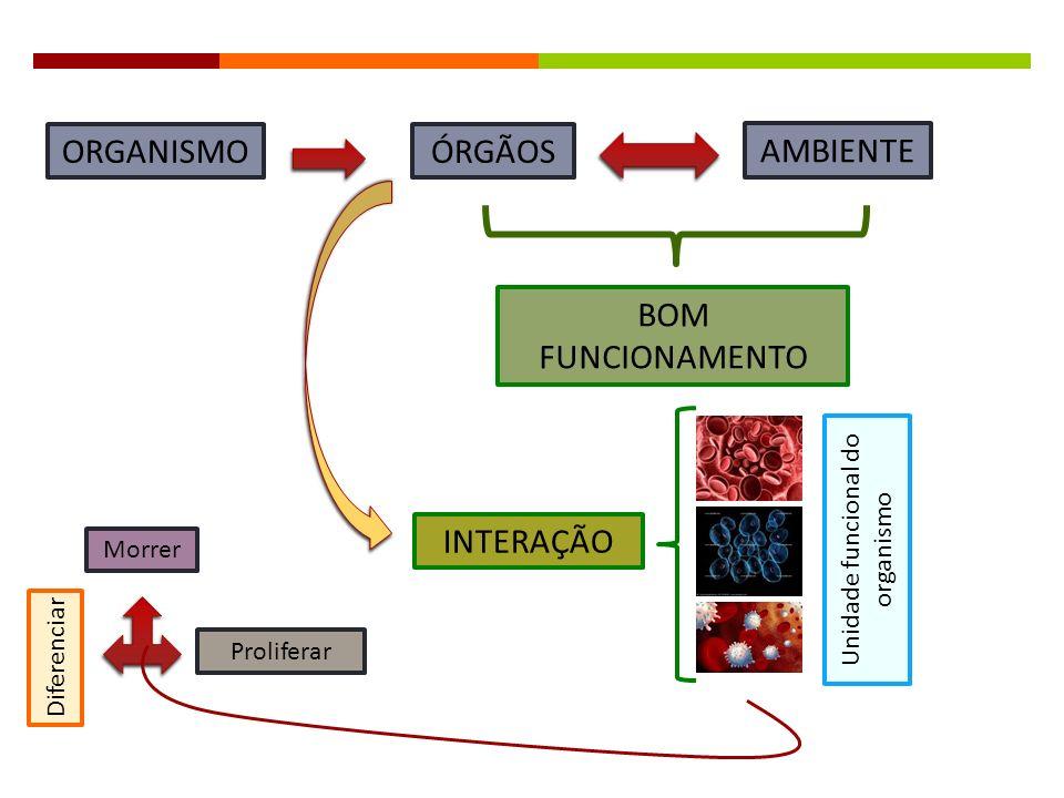 Unidade funcional do organismo