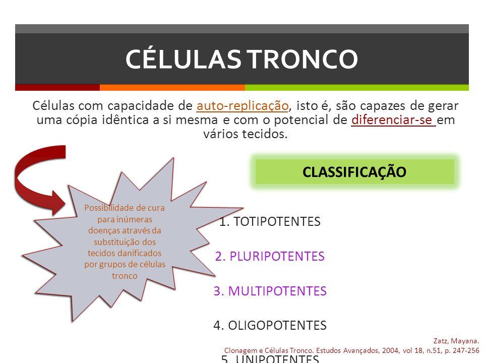 CÉLULAS TRONCO CLASSIFICAÇÃO