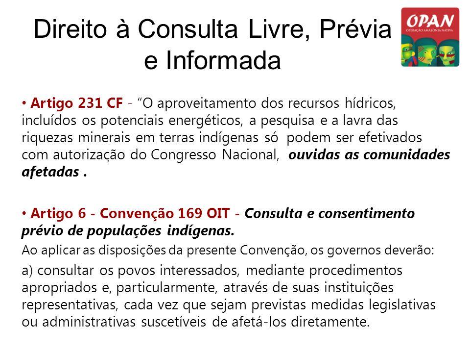 Direito à Consulta Livre, Prévia e Informada