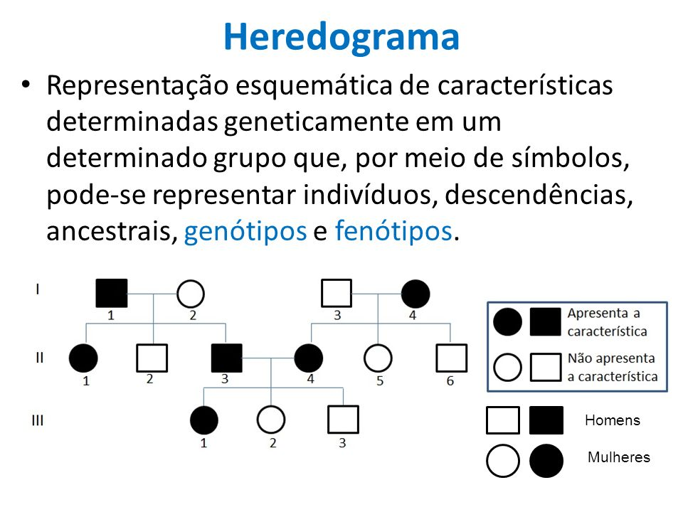 Heredograma