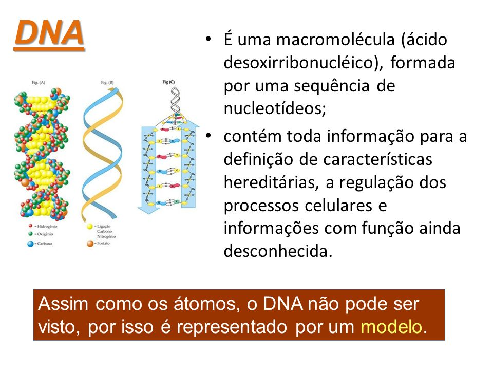 DNA É uma macromolécula (ácido desoxirribonucléico), formada por uma sequência de nucleotídeos;