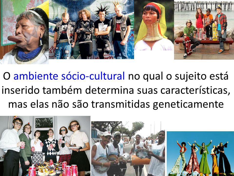O ambiente sócio-cultural no qual o sujeito está inserido também determina suas características, mas elas não são transmitidas geneticamente