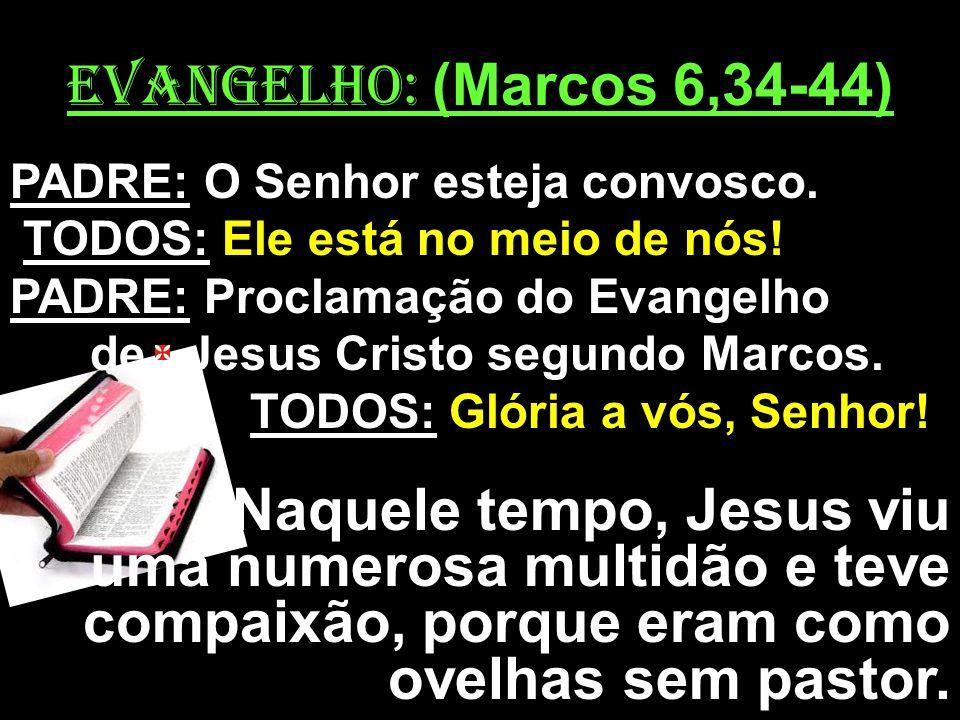 EVANGELHO: (Marcos 6,34-44) PADRE: O Senhor esteja convosco. TODOS: Ele está no meio de nós! PADRE: Proclamação do Evangelho.