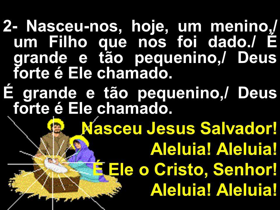 Nasceu Jesus Salvador! Aleluia! Aleluia! É Ele o Cristo, Senhor!