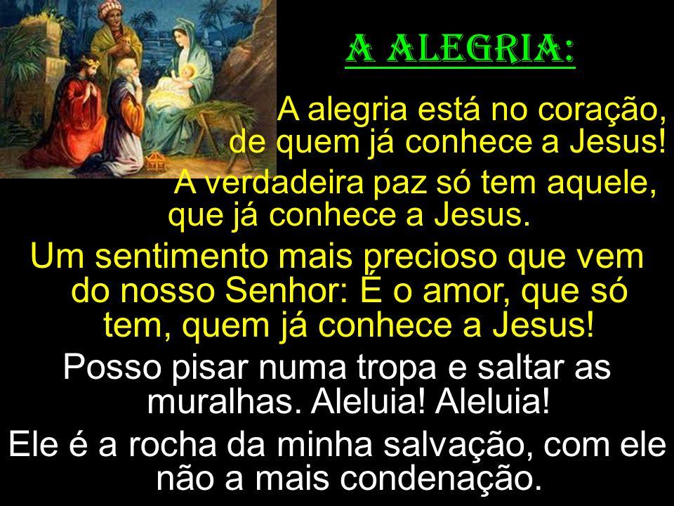 A ALEGRIA: A alegria está no coração, de quem já conhece a Jesus!