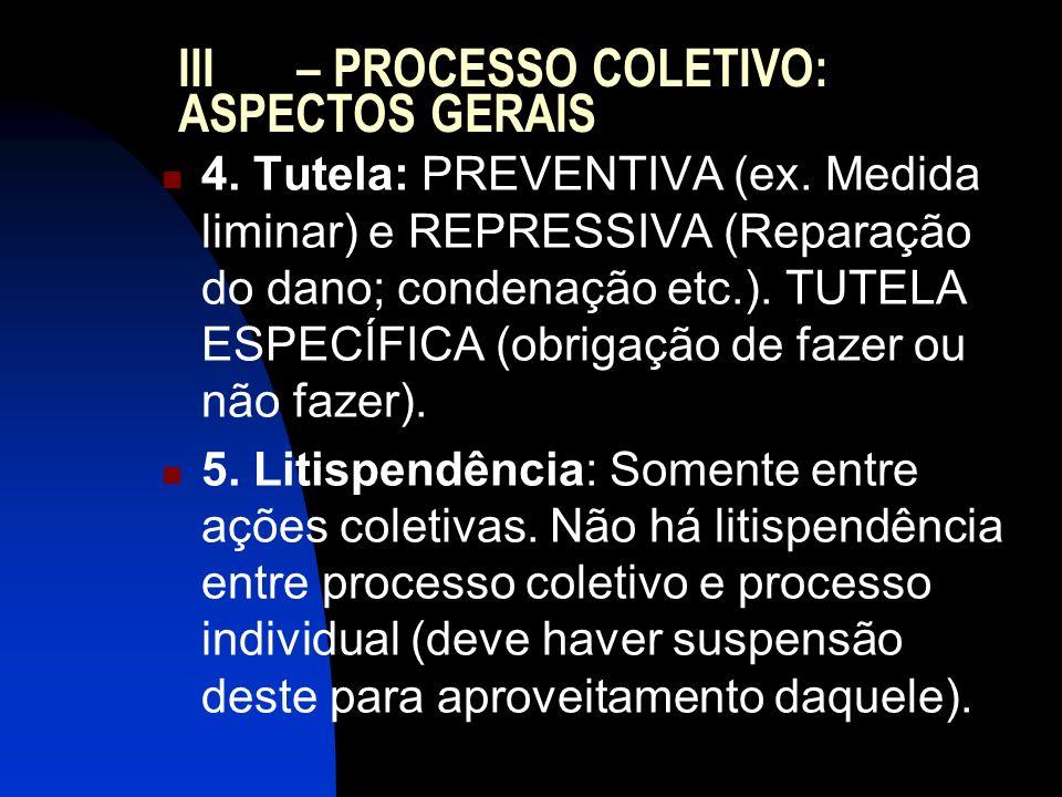 III – PROCESSO COLETIVO: ASPECTOS GERAIS