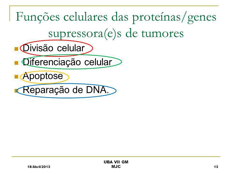 Funções celulares das proteínas/genes supressora(e)s de tumores