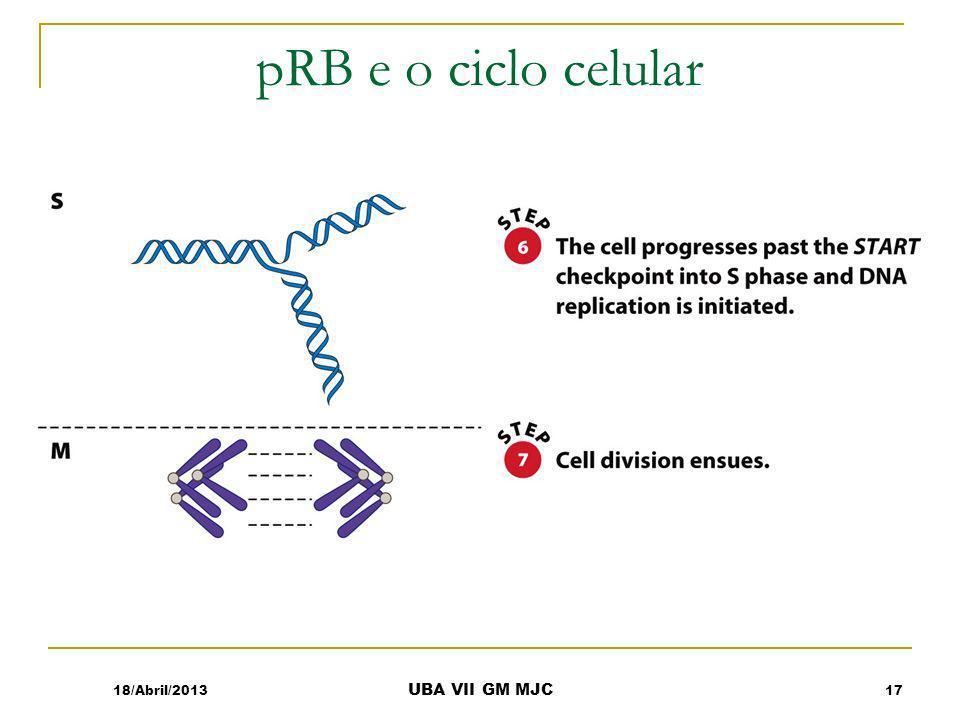pRB e o ciclo celular 18/Abril/2013 UBA VII GM MJC