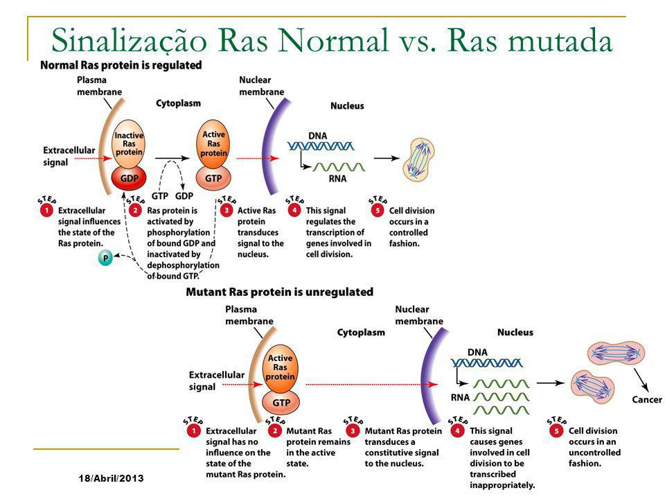 Sinalização Ras Normal vs. Ras mutada
