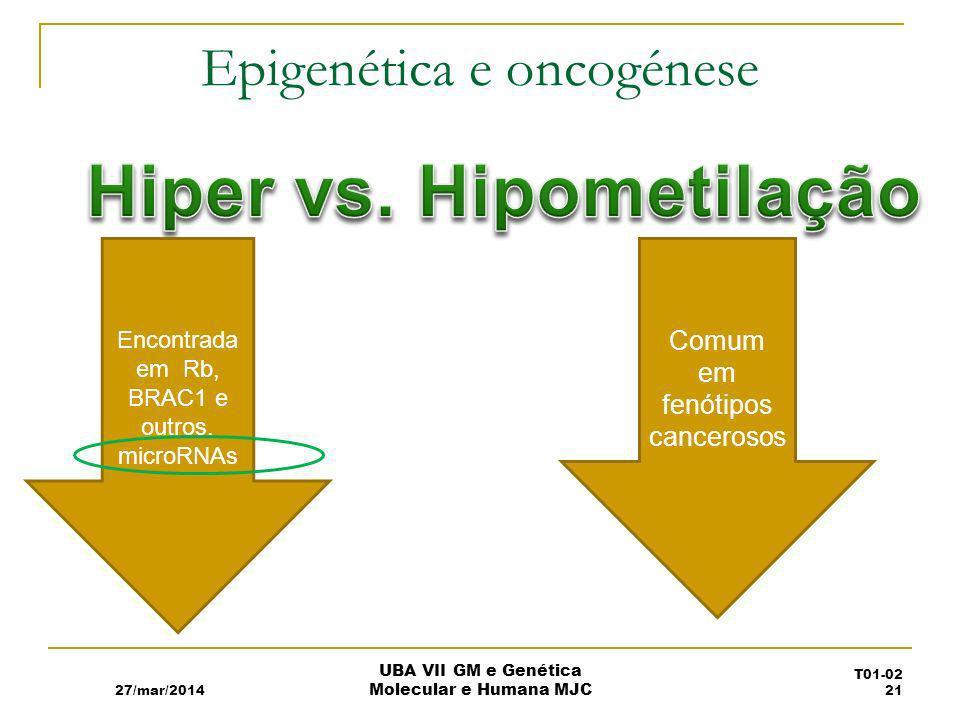 Epigenética e oncogénese
