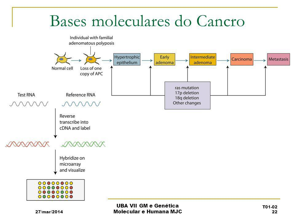Bases moleculares do Cancro