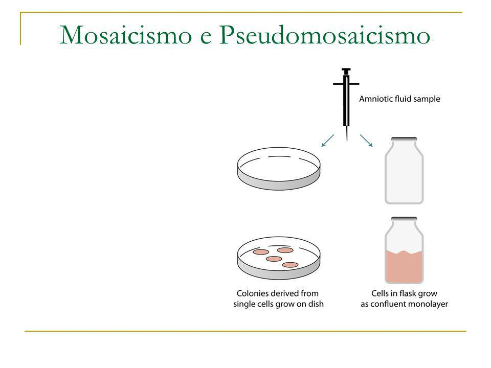 Mosaicismo e Pseudomosaicismo