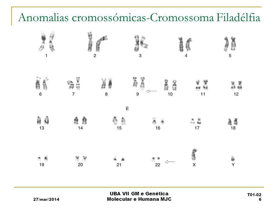 Anomalias cromossómicas-Cromossoma Filadélfia