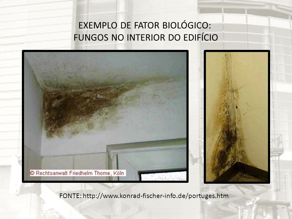 EXEMPLO DE FATOR BIOLÓGICO: FUNGOS NO INTERIOR DO EDIFÍCIO