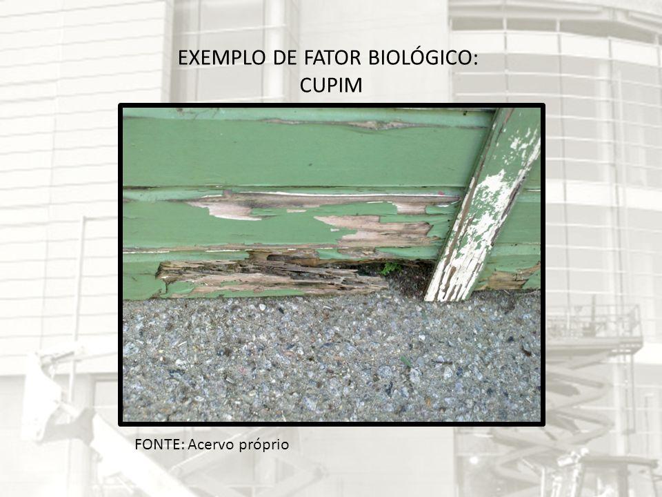 EXEMPLO DE FATOR BIOLÓGICO: