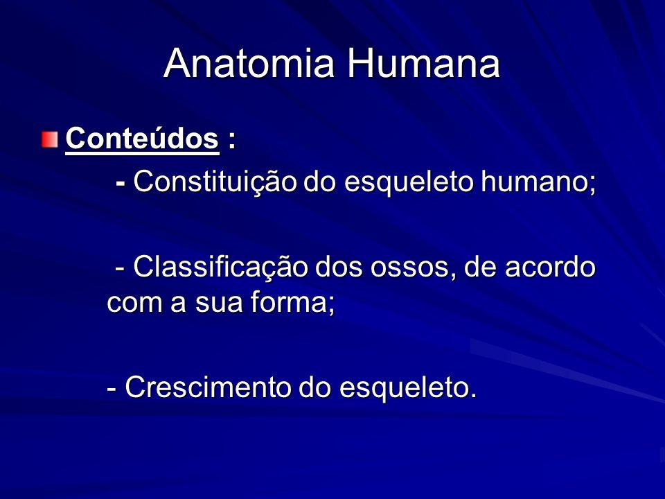 Anatomia Humana Conteúdos : - Constituição do esqueleto humano;