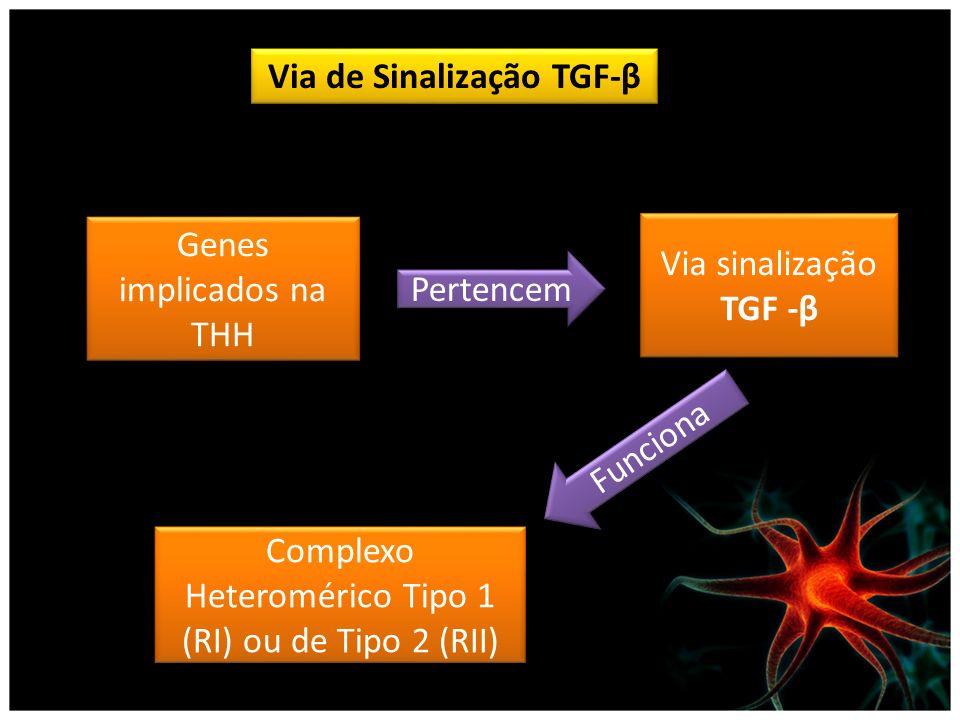 Via de Sinalização TGF-β