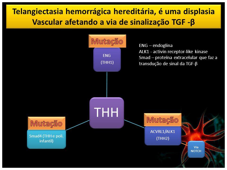 Smad4 (THH e poli. infantil)