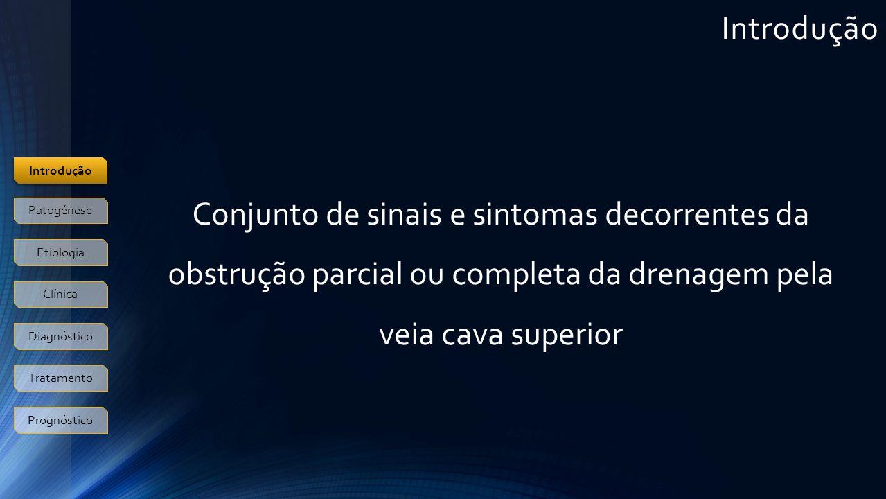 Introdução Introdução. Conjunto de sinais e sintomas decorrentes da obstrução parcial ou completa da drenagem pela veia cava superior.