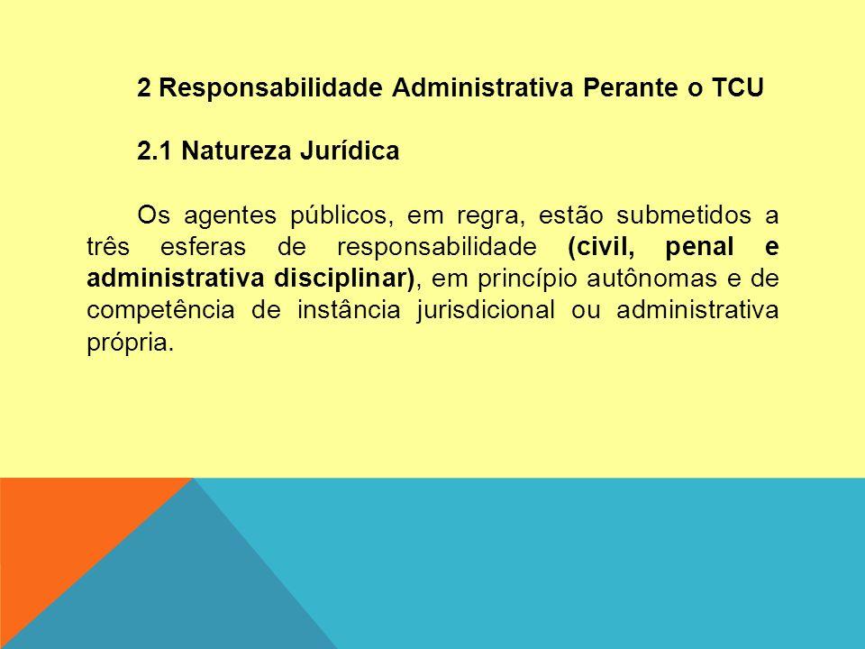 2 Responsabilidade Administrativa Perante o TCU 2