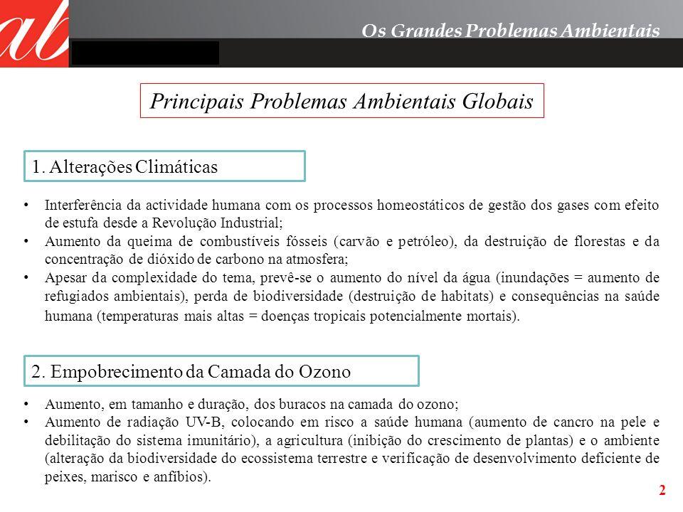 Principais Problemas Ambientais Globais