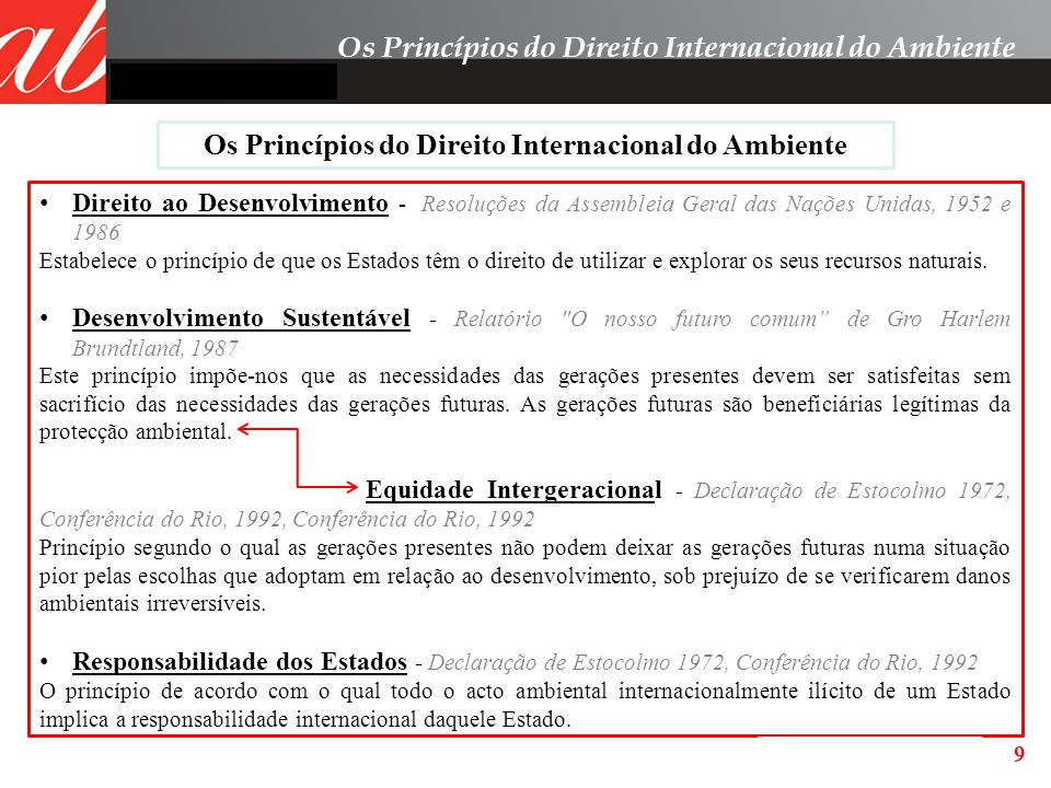 Os Princípios do Direito Internacional do Ambiente