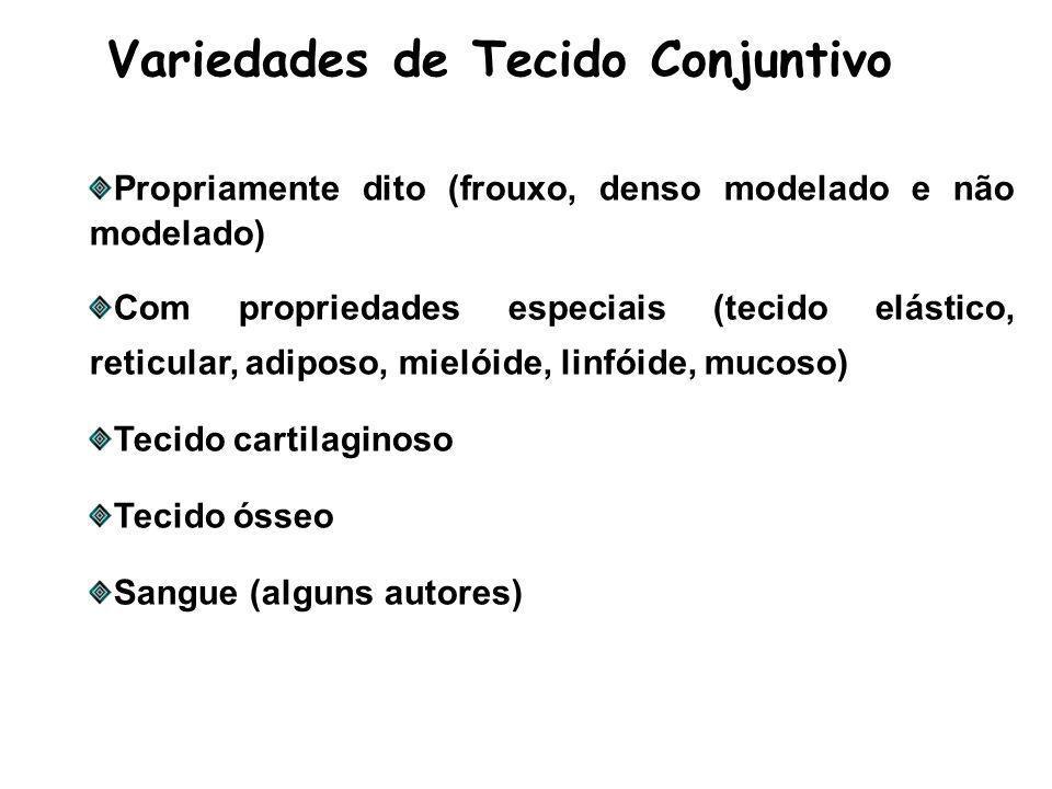Variedades de Tecido Conjuntivo