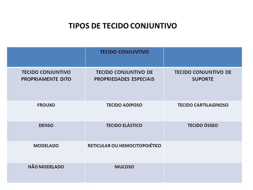 TIPOS DE TECIDO CONJUNTIVO